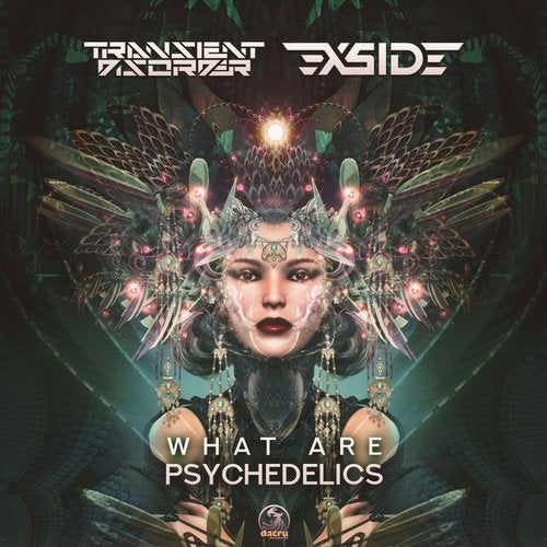 X-side - What Are Psychedelics Original Mix feat Transient Disorder